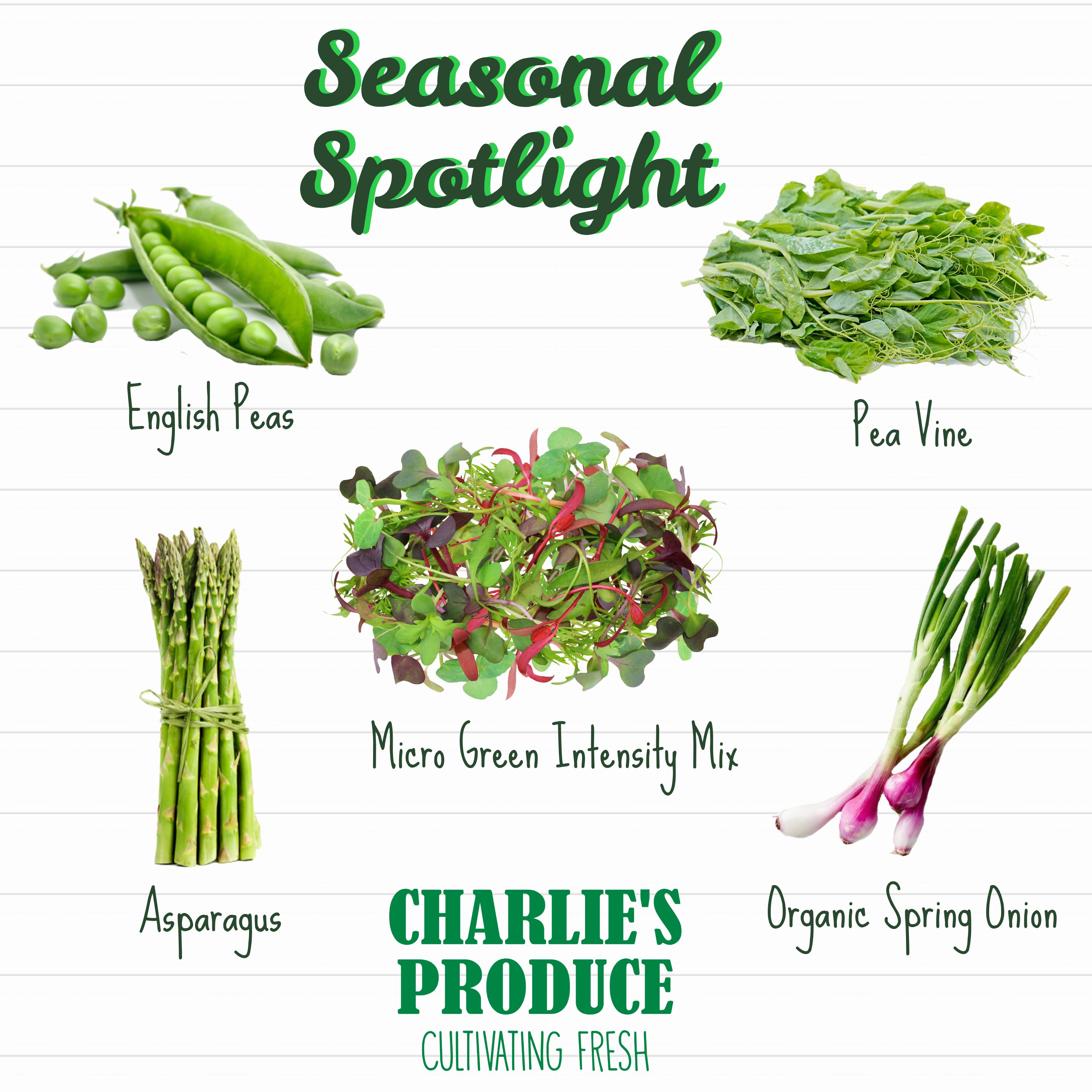 Seasonal Spotlight